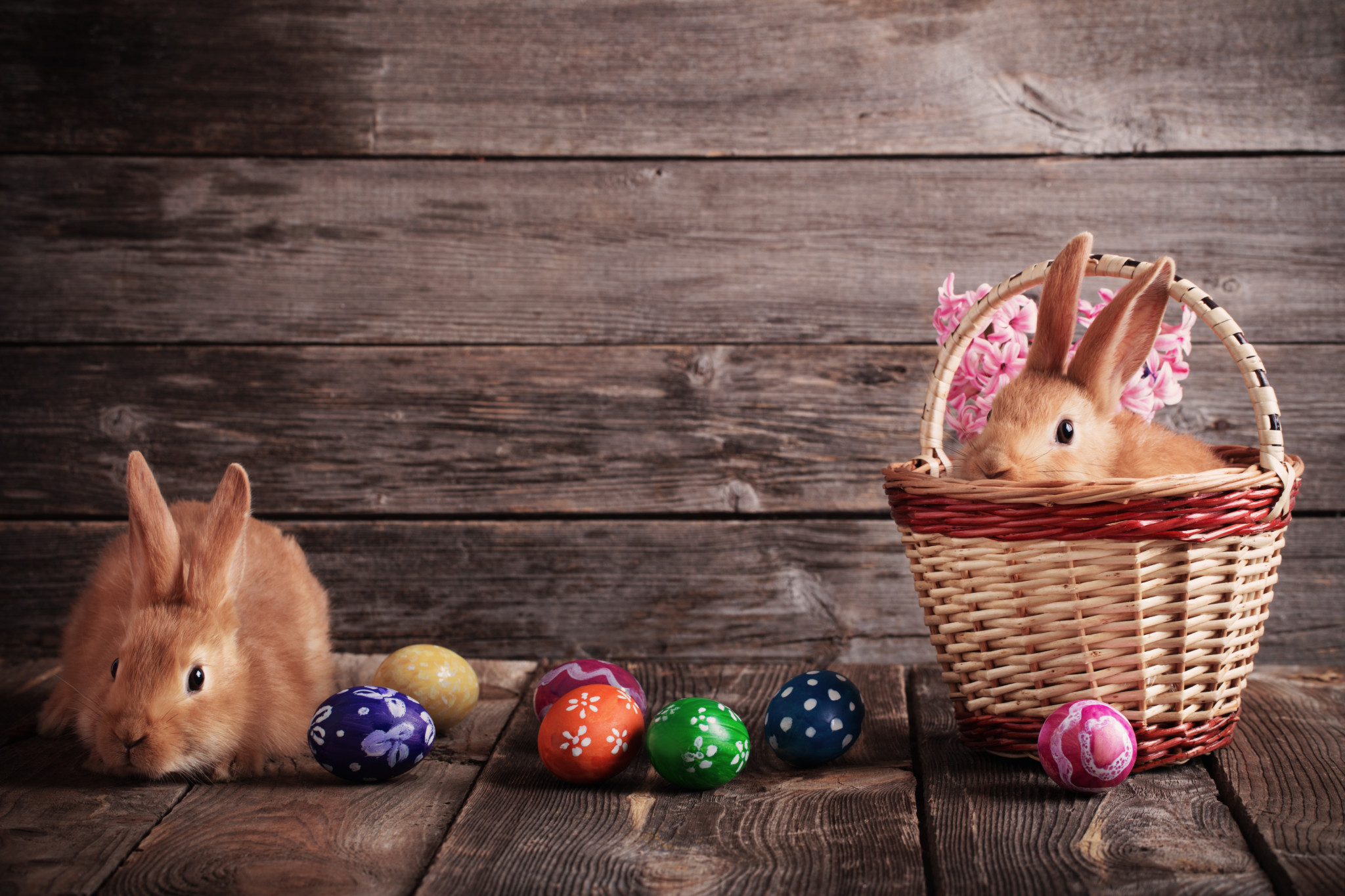 rabbits with Easter eggs on wooden background